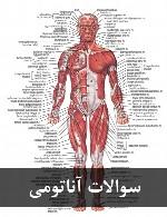 سوالات آناتومی