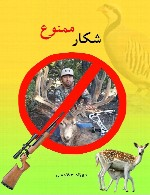 شکار ممنوع