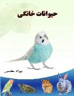 حیوانات خانگی