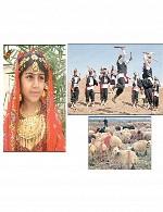 اشتراکات فرهنگی - تاریخی بلوچها با سایر ایرانیان