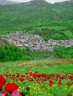 پیرامون کردستان گرامی