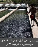 پرورش ماهی قزل آلا در استخرهای دو منظوره - ظرفیت 3 تن