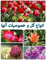 انواع گل و خصوصیات آنها