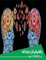 روانشناسی تغییر نگرش و رفتار مصرف کنندگان انرژی