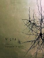 آلبوم «میگنا» موسیقی فیلم زیبایی از حسین بیدگلیHossein Bidgoli - Migna (2016)