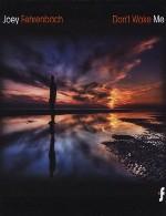 آلبوم « بیدارم نکن » موسیقی الکترونیک زیبایی از جوی فرنباخJoey Fehrenbach - Dont Wake Me (2010)