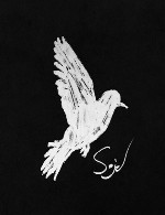 پست راک مسحور کننده ای از گروه سوئدی « سید »Sejd - Sejd (2015)