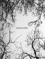 غوطه ور شدن در پهنه بی کران آسمان با ملودی زیبای راندوم فارستRandom Forest - Random Forest (2014)