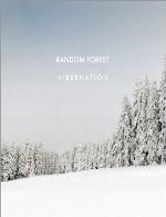 پست راک – امبینت زیبای راندوم فارست در آلبوم « خواب زمستانی »Random Forest - Hibernation (2014)