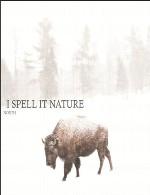 آلبوم پست راک زیبای « شمال » کاری از گروه I Spell It NatureI Spell It Nature - North (2014)