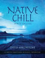 تجربهی سبک چیل اوت با موسیقی بومیان آمریکا در آلبوم جدید دیوید آرکنستونDavid Arkenstone - Native Chill (2014)