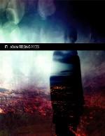 آلبوم بسیار زیبای « قطعات » اثری از آدم فیلدینگAdam Fielding - Pieces (2014)