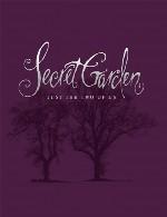 سکرت گاردن: ترکیب زیبا و آرامشبخش ویولن و پیانو در آلبوم «تنها ما دو نفر»Secret Garden - Just the Two of Us (2013)