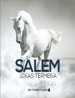 فراتر از خیال با موسیقی فوق العاده زیبای لوکاس ترمناLukas Termena - Salem (2013)