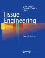 مهندسی بافت – از آزمایشگاه تا کلینیکTissue engineering