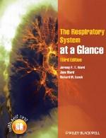 سیستم تنفسی در یک نگاهThe Respiratory System at a Glance