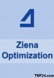 Ziena Optimization KNITRO v9.0