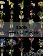 مدلهای سه بعدی  گل و گیاهFlowers 3D Models