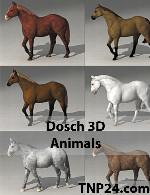 داچ 3D حیواناتDosch 3D - Animals