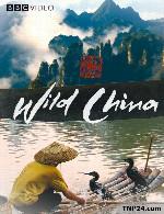 مستند آشنایی با حیات وحش چین دوبله فارسیWild China 2011