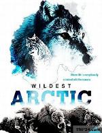 مستند وحشی ترین ها دوبله فارسیWildest Arctic 2012