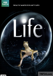 مستند زندگی دوبله فارسیLife 2009