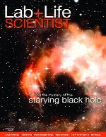 Lab Life Scientist December 2016 - January 2017