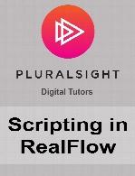 Digital Tutors - Scripting in RealFlow