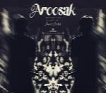امیر آرس - آلبوم تک ترانه هاAmir Ares