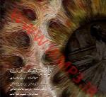 آرین مجیدی - آلبوم تک ترانه هاArian Majidi