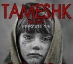 تمشک - آلبوم تک ترانه هاTameshk