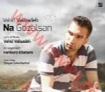 وحید ولیزاده - آلبوم تک ترانه هاVahid Valizadeh