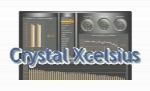 Crystal Xcelsius Professional 4.5