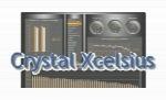 نرم افزار کریستال اکسلسیوسCrystal Xcelsius Professional 4.5