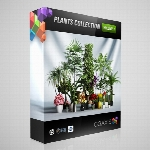 CGaxis Models Volume 01 Plants