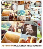 پروژه آماده افترافکت نمایش تصاویر در قالب چرخش بلوک سرامیکی همراه با آموزش ویدئویی از ویدئوهایوVideohive Mosaic Block Reveal