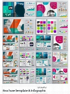 Brochure Template Design And Business Infographic Vector