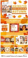 CreativeMarket Animated Autumn Instagram Posts