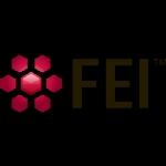 FEI Amira 6.0.1 X64