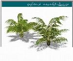 آبجکت اسکچاپ: درخت