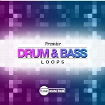 لوپPremier Sound Bank Premier DnB Loops WAV