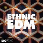 لوپ و سمپلBig EDM Ethnic EDM (WAV, MIDI, SYLENTH1, SPiRE)