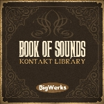 وی اس تی هیپ هاپBigWerks Book of Sounds KONTAKT