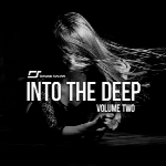 لوپ و سمپلReveal Sound Into The Deep Vol.2 for Spire WAV MiDi