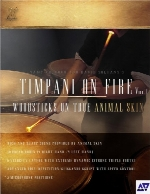 FTSamples Timpani On Fire Vol 1 KONTAKT