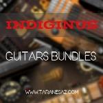 وی اس تی گیتارIndiginus – Guitars Bundles (REPACK)