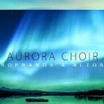 وی اس تیAria Sounds Aurora Choir KONTAKT