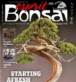 Esprit Bonsai - May 01 2018