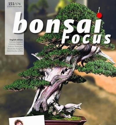 Bonsai Focus 2018-03-28