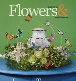 Flowers and Magazine 2018-02-01